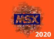 MSX calendar 2020