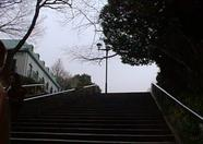 These stairs lead to Ueno park.