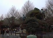 A statue in Ueno park.