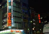 More fancy Akihabara neon lights.