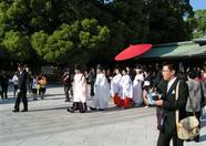 We are in luck! A traditional Japanese wedding!