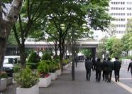 Another picture of the Keio Plaza Hotel surroundings