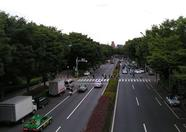 Then across the bridge to Yoyogi park